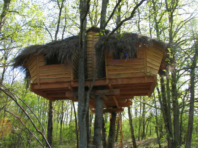 Cabane perchée au printemps