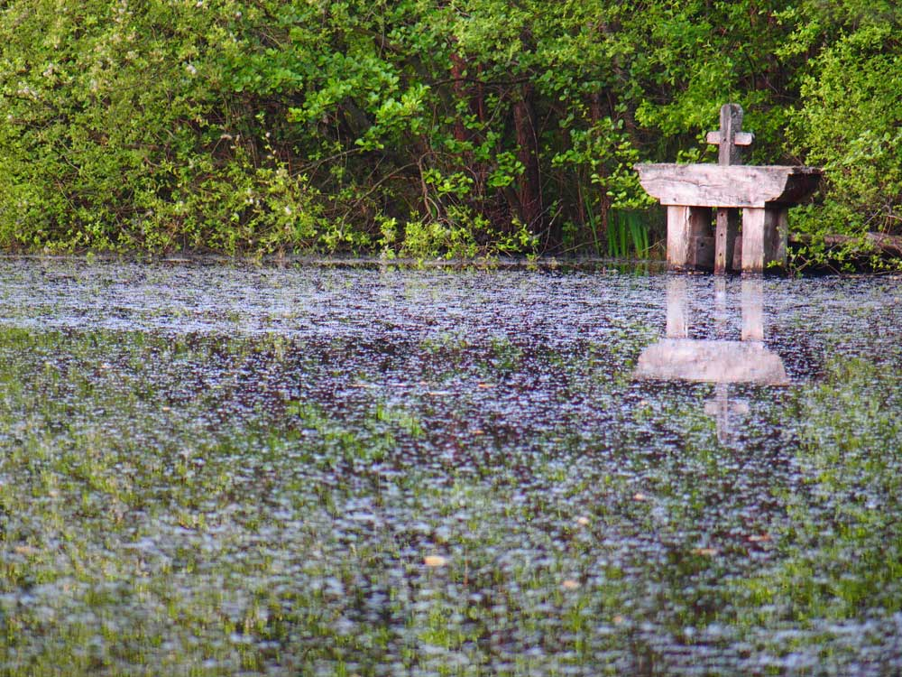 Sologne bonde étang